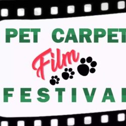Speciale sul Pet Carpet Film Festival in TV su Canale Italia 11